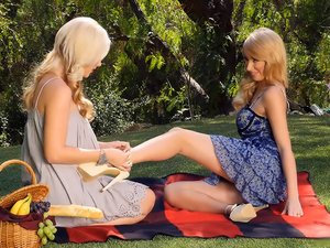 Blondes on a picnic have pussy eating sex